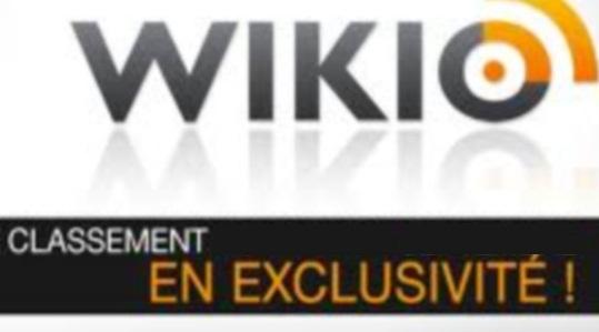 [EXCLU]: Classement Wikio Mai 2011, CatégorieAmitié…