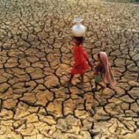 François Fillon en Afrique: Allez les privés! Il faut ramener du pognon!
