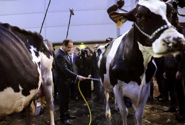 François Hollande et l'effet 75% > Un vrai coup defusil…