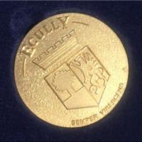 Épinglé! Ma médaille de la ville d'Écully...