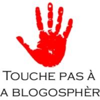 TRIBUNE: «La blogosphère, c'est le média de ceux qui n'en ont pas''  #touchepasmablogo...