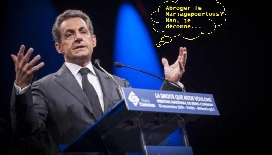 Sarkozy PlugAnal