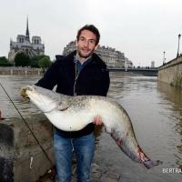 Le baromètre du #Zouave: comprendre la crue de la Seine, Paris...