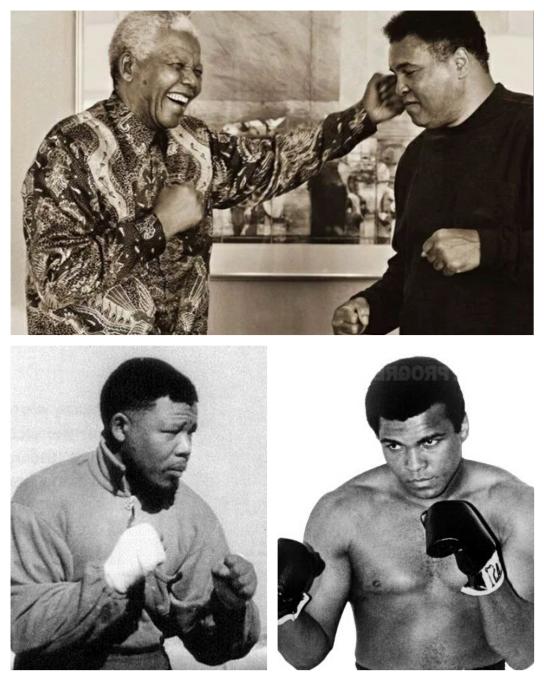 Nelson Mandela Mohamed Ali