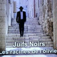Juifs Noirs (ou l'inverse): les racines de l'olivier ...