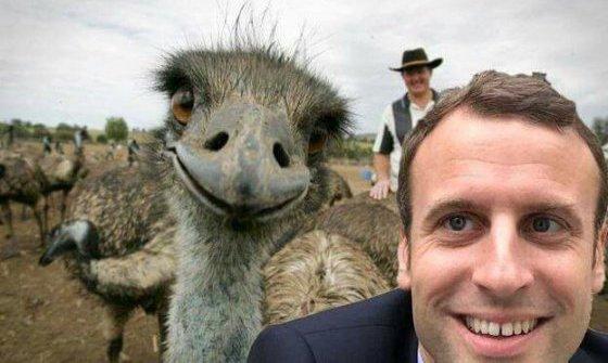 Macron Selfie humour