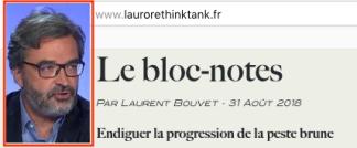 Laurent Bouvet Endiguer la peste brune