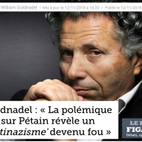 Et Gilles-William #Goldnadel inventa le «#racisme #Antinazis», en 2018 …