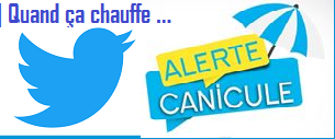 canicule-Twitter