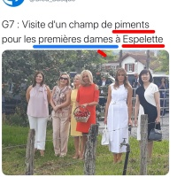 «D'Espelette #Housewives» | Allégorie...