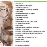 «#Nègre», ma révolte, ma gueule, mon nom. Explications verset #Césaire...