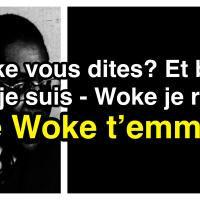 «… et le #Woke t'emmerde! »